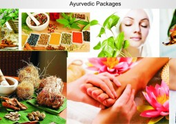 Ayurvedic Packages