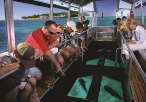 Glass-bottom boat ride; Andaman and Nicobar Island Tourism