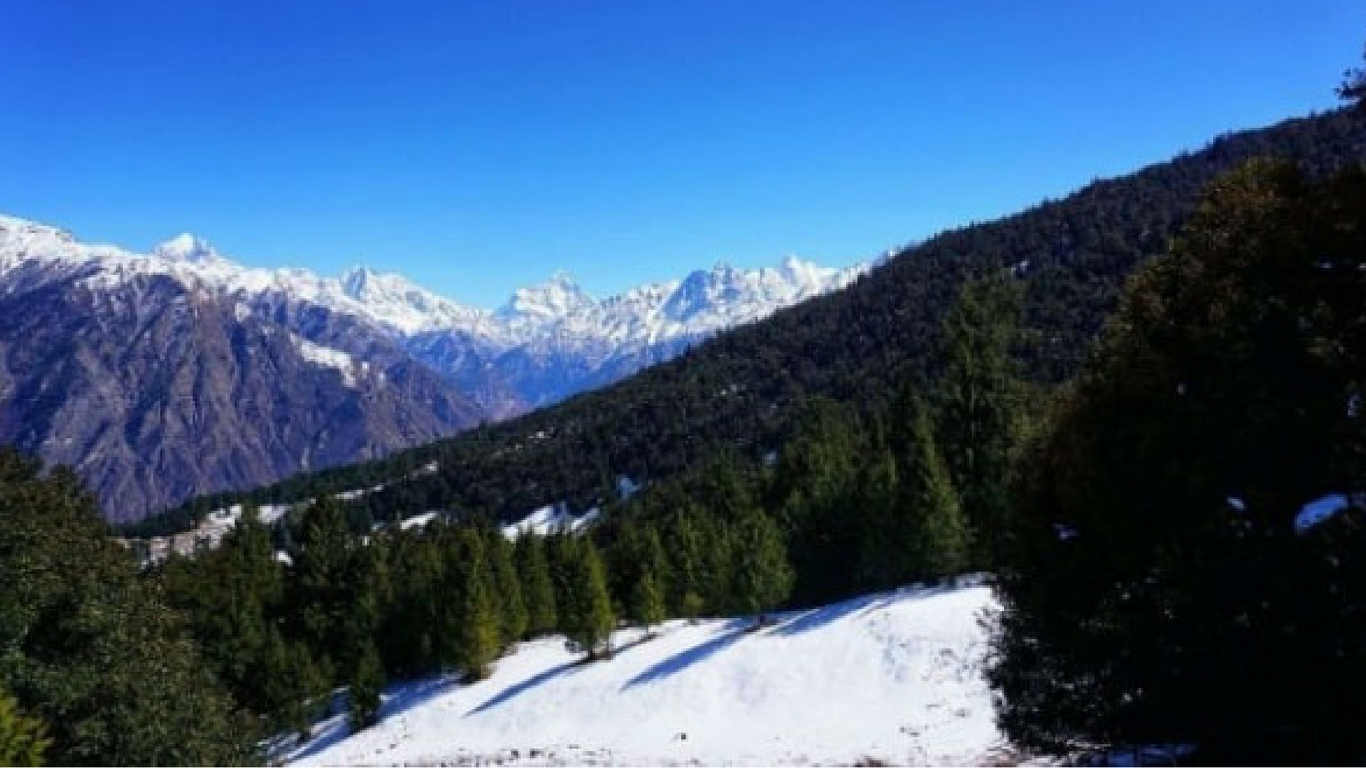 Best time to Visit Auli and Auli Weather | Trip Experience