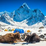 places for trekking in Himalayas